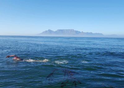 Abhejali-Robben-Island2-se-Stolovou-horou-a-rasami