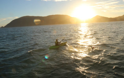Cookova úžina na Novém Zélandu
